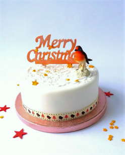 Christmas cake with robin red breast